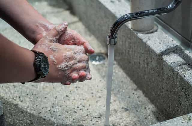 Wash hands Regularly
