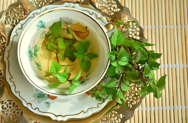 Peppermint-Tips to loose tummy fat